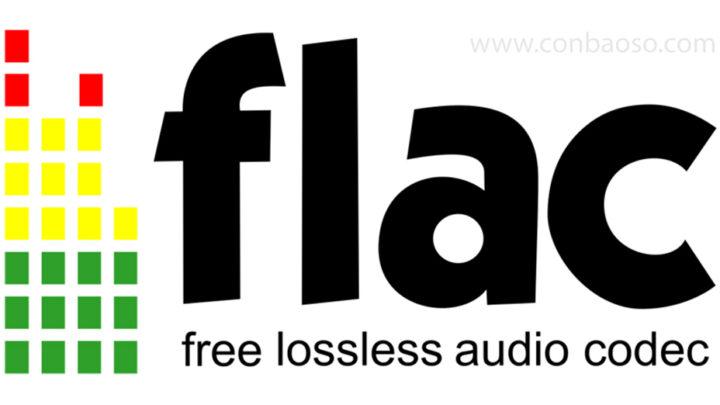 Định dạng nhạc FLAC là gì ?
